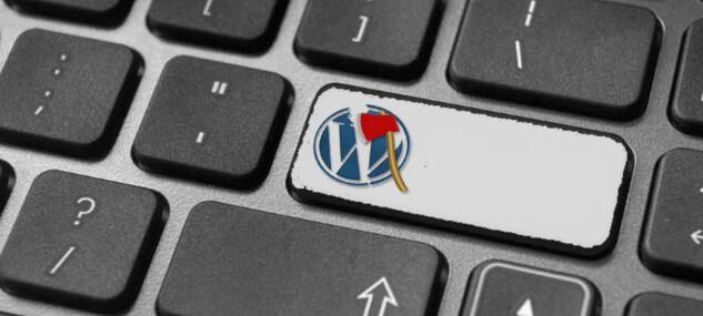 Плагины WordPress, полезные для разработчиков