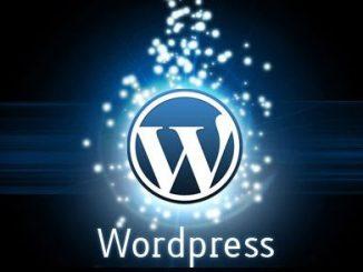 Как правильно установить и настроить WordPress